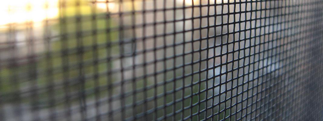 Insektenschutzgitter bei Wanzen im Haus | Seitz Manufaktur in Weigendorf
